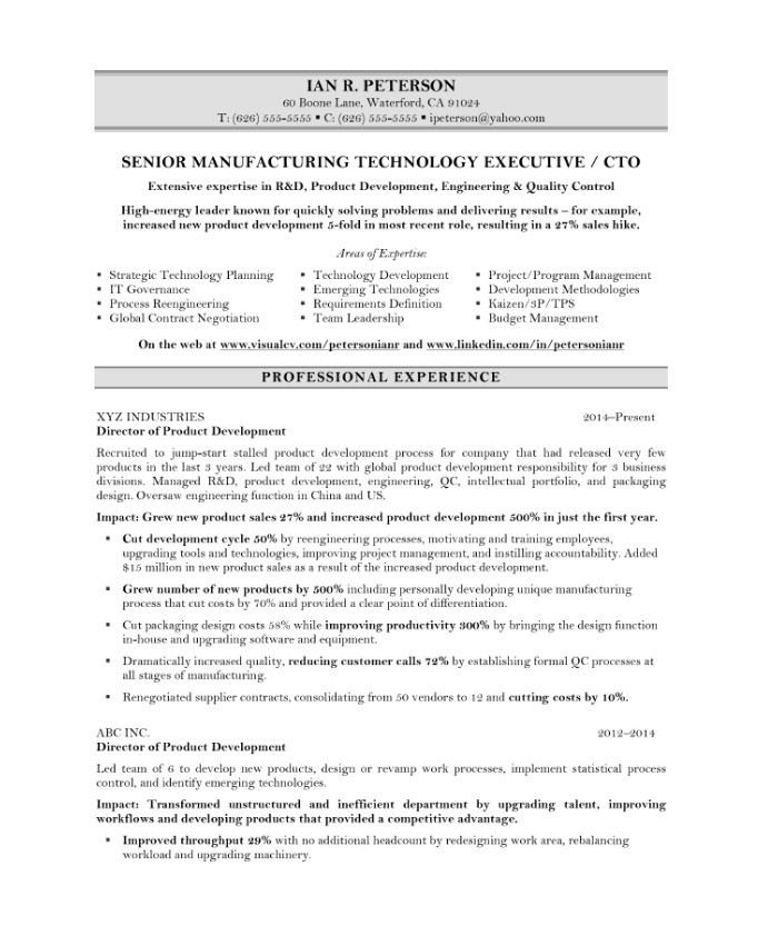 chief technology officer resume sle