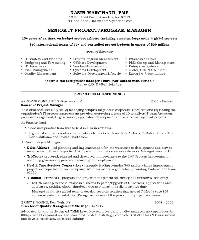 project manager resume sle